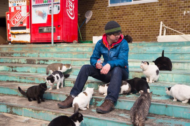 Cats_in_Japan_2