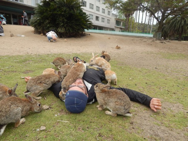 Rabbit_Island_in_Japan_2